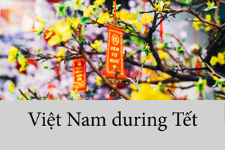 Vietnam during Tet