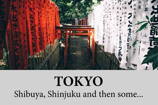 TOKYO – Shibuya , Shinjuku and then some