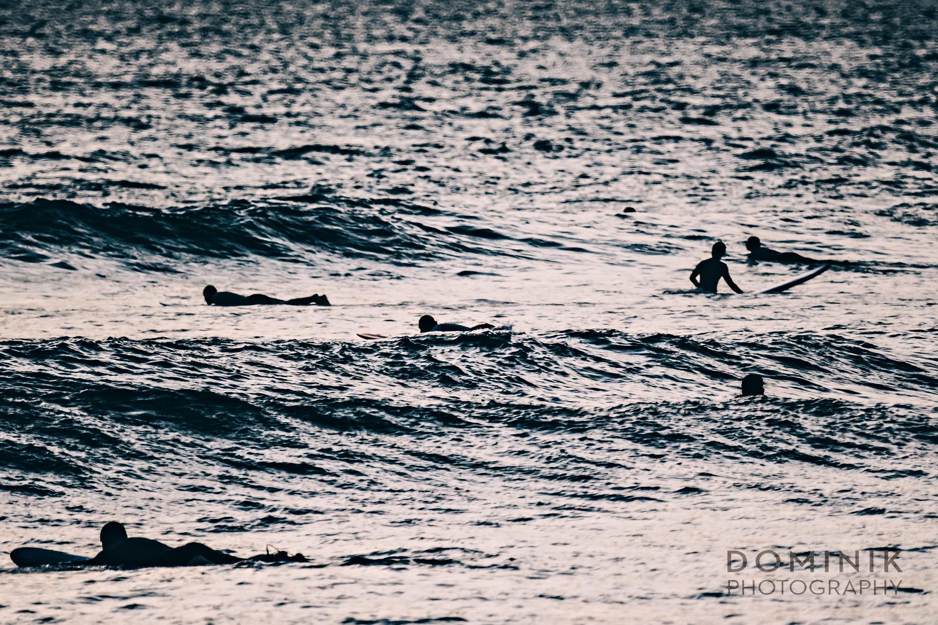 SURFERS-12