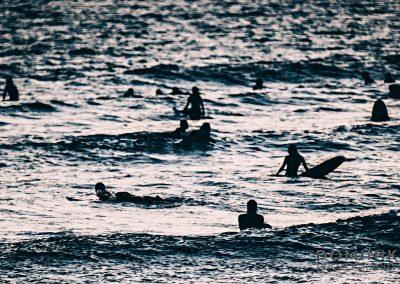 SURFERS-13