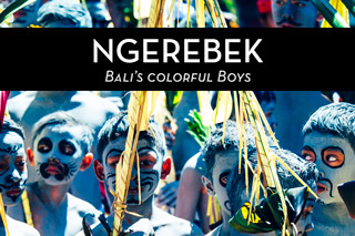 Ngerebek – the colorful boys of Bali