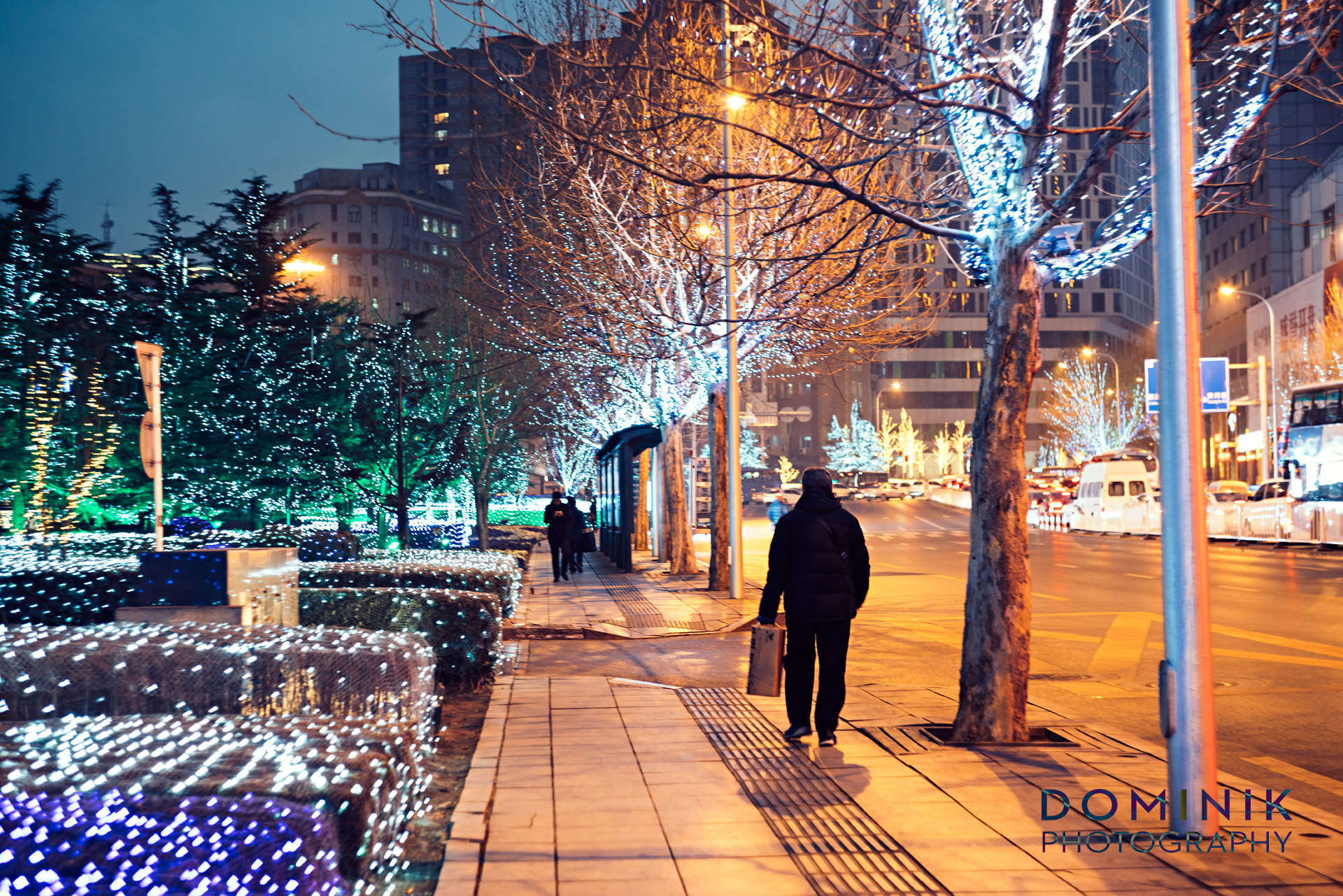 Dalian North East China Photographs by DOMINIK VANYI